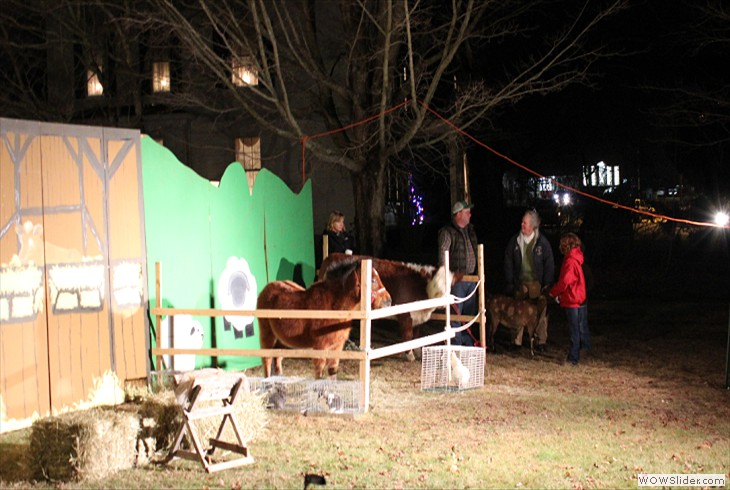 The Live Nativity is Alive with Animals